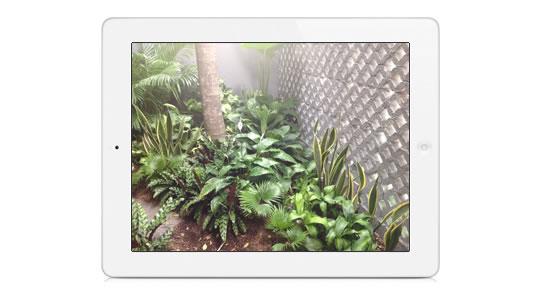 Primeras fotos con el iPad N