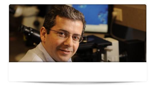 """Dr Atakan: """" LiquidMetal no antes de 3 años """""""