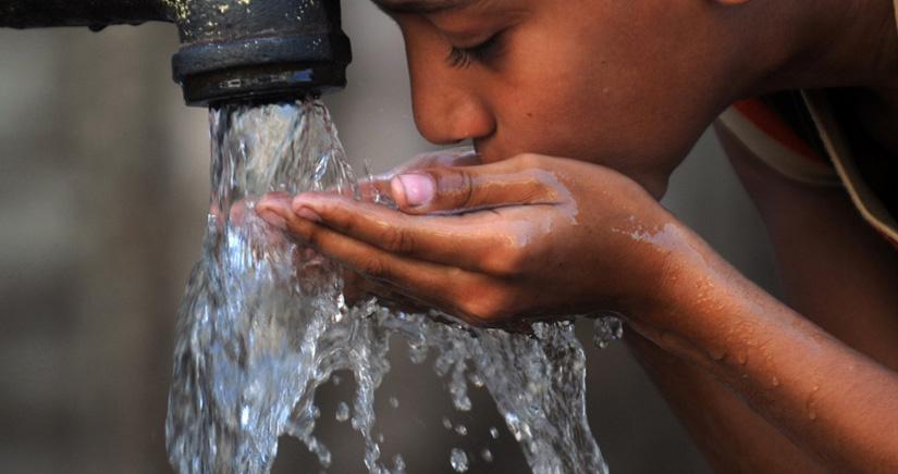 Oblígate a beber agua con Plant Nanny