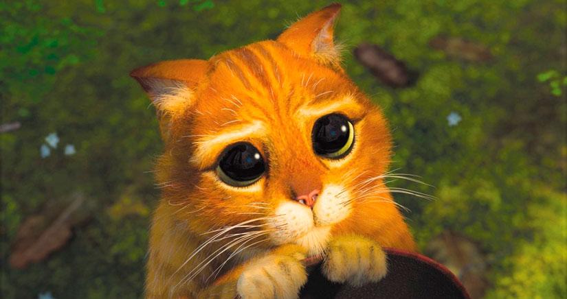 iPhoneA2 te necesita, ¿Nos ayudas?