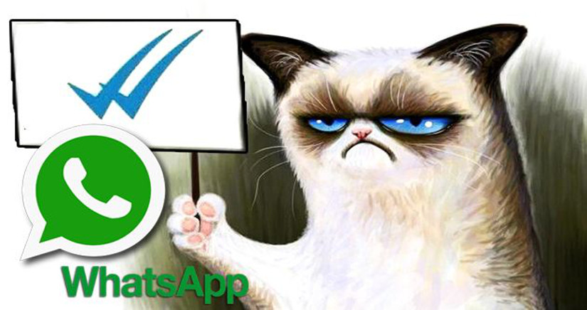 "Whatsapp: Evitar los ""temidos"" ticks azules"