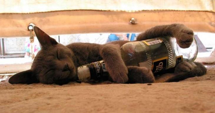 Facebook reconocerá una foto en la que estés borracho y te recomendará que no la subas…