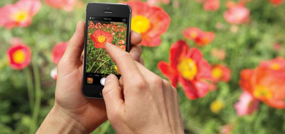 Realiza fotos perfectas activando la cuadrícula de la aplicación Cámara