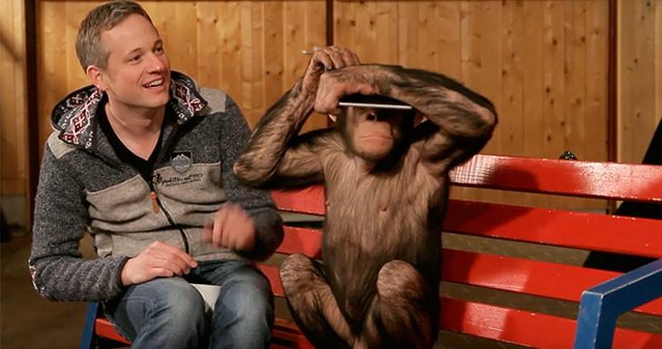 """El """"mago del iPad"""" celebra el Año del Mono tomándoles el pelo a unos chimpancés"""