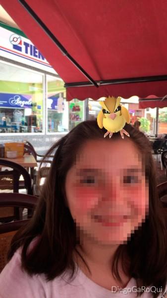 Cazar Pokemon