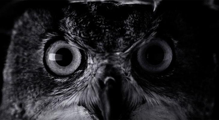 Apple estrena el primer anuncio para el iPhone 7