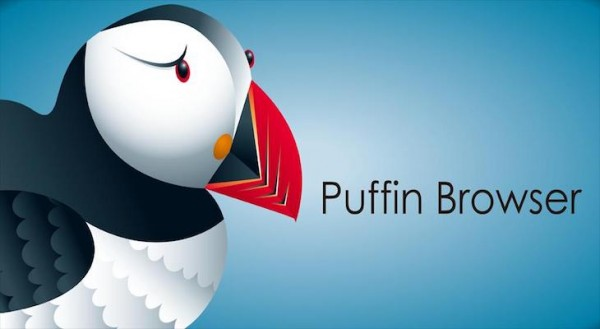 puffin-flash-ios