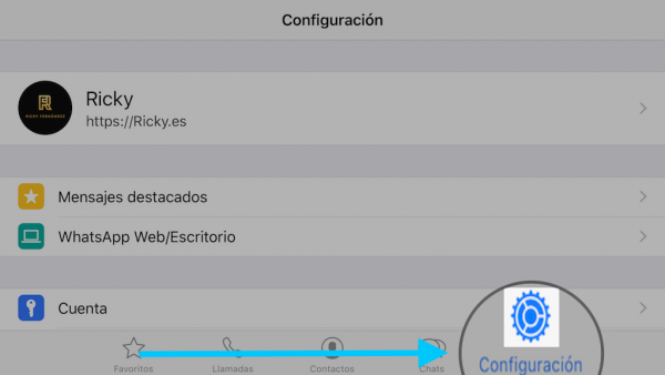 WhatsApp web en el iPad - Tutorial - Paso 8