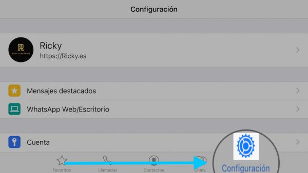 WhatsApp web en el iPad - Tutorial - Paso 8
