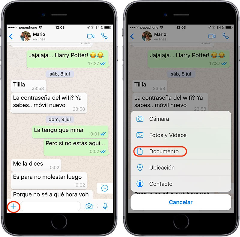 WhatsApp_Compartir_Documentos