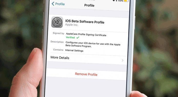 Cómo quitar la versión beta de iOS 12 y quedarse con la final